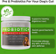 thumbnail 2 - 2 Bottles PROBIOTICS Digestive Enzymes for Dogs Chew Treats 60ct Each PAWMEDICA
