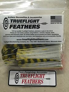 Trueflight 5 inch Feathers Right Wing Parabolic Cut 12 pack Chartreuse Barred