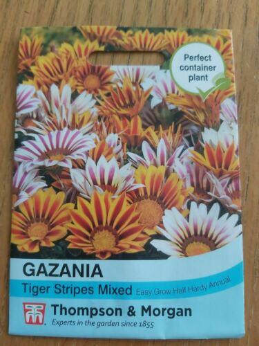 Gazania Tiger Stripes Mixed Flowers Thompson /& Morgan 20 Seed