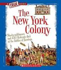 The New York Colony by Kevin Cunningham (Hardback, 2011)