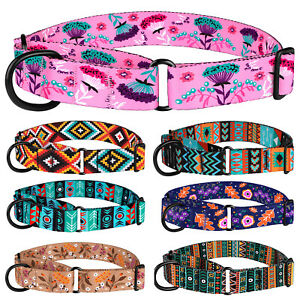 1-034-Martingale-Dog-Collar-Nylon-Training-Collar-Wide-Pet-Choke-Collars-for-Dogs