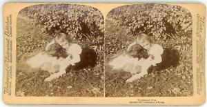 Stereo-Underwood-amp-Underwood-Publishers-Strohmeyer-amp-Wyman-Household-Pets-Vin
