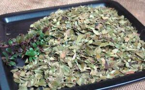 Krauterino 24-ORSO uva foglie tutta - 100g