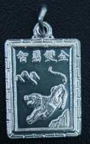 Zodiac Charm Aquarius chinois tigre Bijoux argent sterling .925