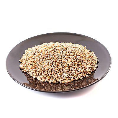 Whole Wheat Grains 100g (RM100WHEAGRAI)