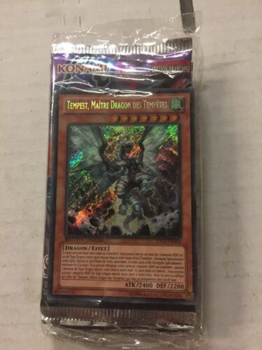 Dragon Ruler Of Waterfalls NO TIN For Card Game CCG TCG FRENCH Yugioh Tempest