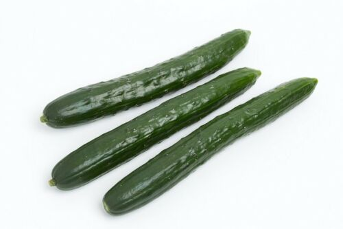 """150 seeds extremely long Cucumber /""""Telegraph Improved/"""" salad up"""