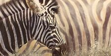 "Lyndsey selley ""MIX & MATCH"" ZEBRA AFRICA FIRMATA LTD ED Dimensioni: 39cm x 65cm NUOVO"