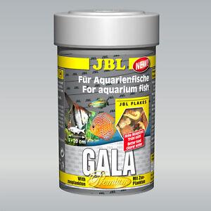 Jbl Gala Le plat principal premium Pour les connaisseurs de différentes tailles
