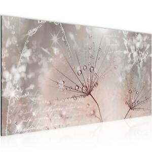 Bild-Bilder-Wandbild-XXL-100x40-cm-Pusteblume-Kunstdruck-Leinwand-aus-Vlies-Deko