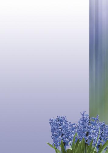 Motivpapier Briefpapier blaue Hyazinthen 50 Blatt A4 Blumen Frühling Blüte grün