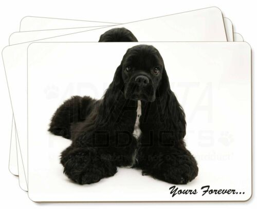 American Cocker Spaniel 'Yours Forever' Picture Placemats in Gift Box, ADACS2P