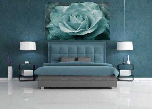 No02 Duck Egg Blue Rose with Raindrops Canvas Wall Art Print A1 A2 A0 A4