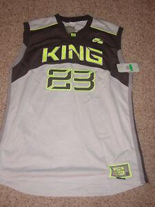 wholesale dealer 4ddf1 2e15f Details about Nike LEBRON JAMES KING #23 Original Team Gray/Volt XL Jersey!  Size L +4 NWT's!