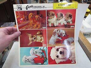 1960'S VINTAGE SALESMAN SAMPLE SHEET POSTCARDS DOGS
