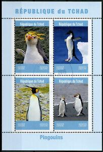 Chad-2019-CTO-PINGUINI-Pinguino-King-4v-M-S-pingouins-birds-stamps