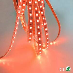 24v-5M-RED-LED-SMD-STRIP-ROPE-BRIGHT-LIGHT-WATERPROOF-STRIPS-MARKER-TRUCK-LORRY