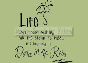 DANCE IN RAIN Vinyl Wall Saying Lettering Quote Art Decoration Decal Sign Craft