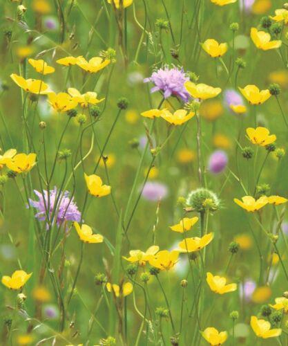 Holden Decor Meadow Photo Mural Flowers Garden Green Yellow Feature Wallpaper