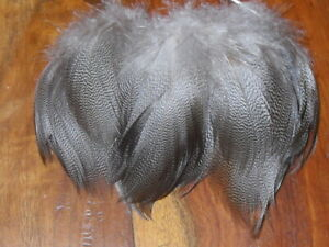 DREAM 30  MALLARD DUCK BROWN FEATHERS-FLY TYING,ART/& CRAFTS,MILLINERY,NATIVE