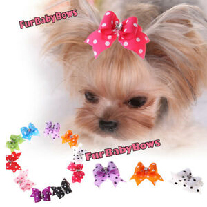5 Crystal DOT Shih Tzu Dog grooming bows CLIPS Poodle Puppy Bow  Maltese Yorkie