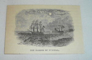 small-1879-magazine-engraving-THE-HARBOR-OF-FUNCHAL-Madeira