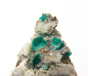5509-Chalkophyllit-chalcophyllite-Gengma-China-2014-Specimen-mineraux-Stufe