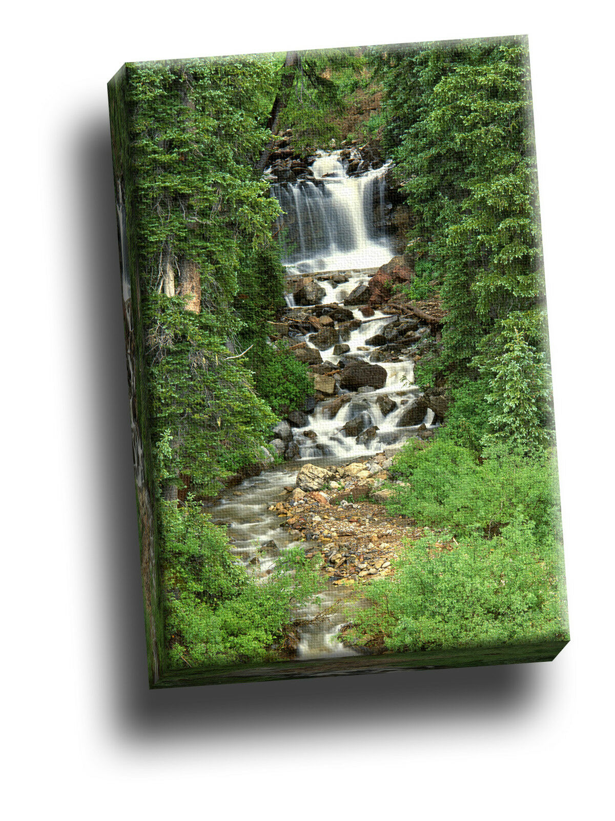 Cascade sur deep creek, san juan national portrait giclee toile photo art