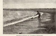 TERRE NEUVE NEWFOUNDLAND PECHEUR CAPELAN FISHERMAN COD IMAGE 1890 PRINT
