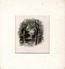 Uno sguardo attraverso gli alberi di Windsor Castle-ANTICA INCISIONE SU ACCIAIO (c.1840)