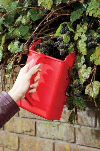 Kitchen Craft Large Fruit /& Berry Picker Harvesting Scoop Dead Heading Tool
