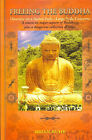 Freeing the Buddha: What it is and What it Can Do for You by Pia Ruhe, Brian Ruhe (Hardback, 2002)