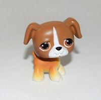 Littlest Pet Shop LPS Animal Brown Boxer Puppy Dog # 25 Figure Child Girl Toy