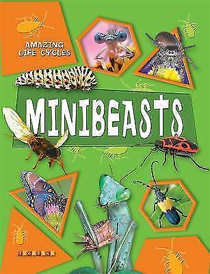 George McGavin, Amazing Life Cycles: Minibeasts, Very Good Book