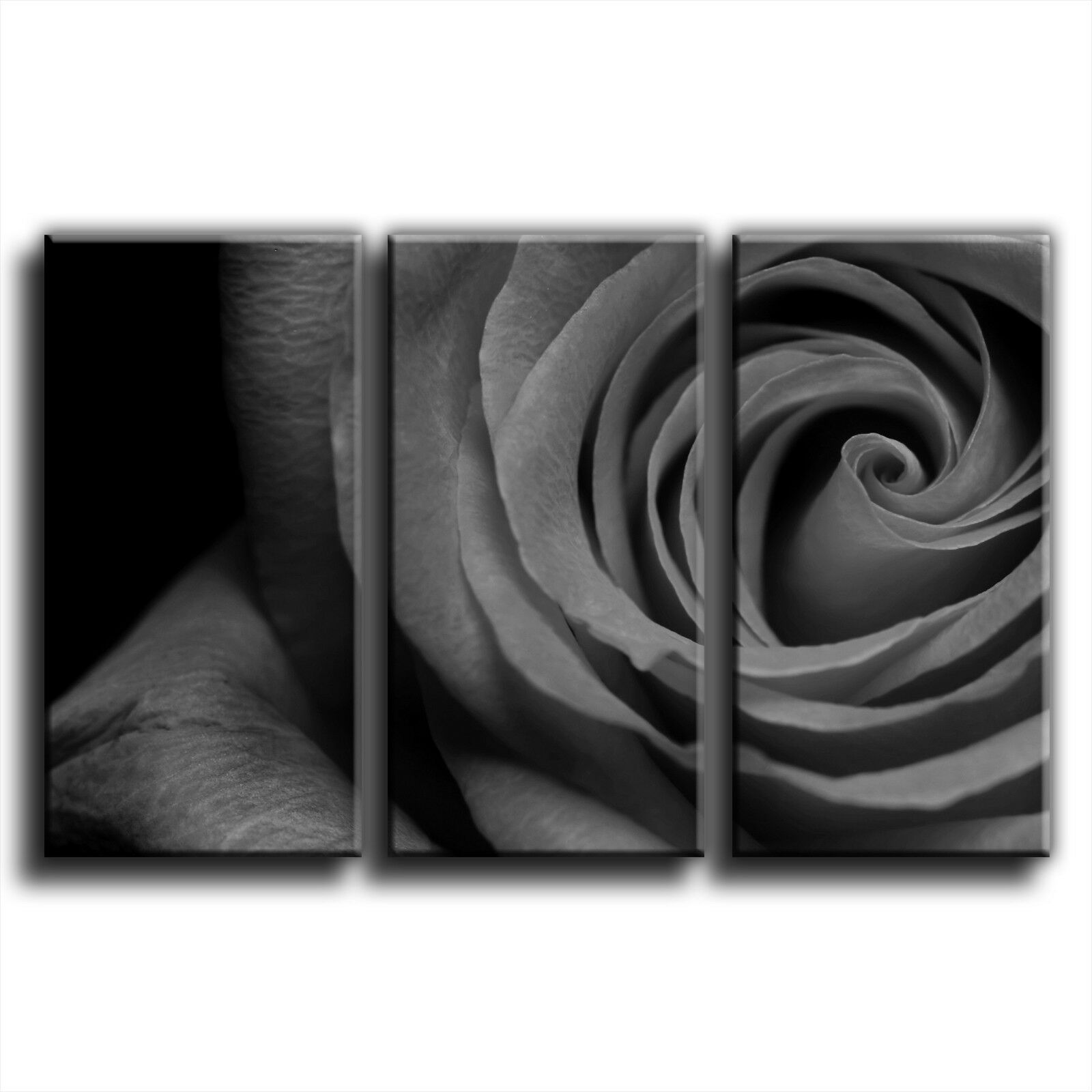 Rosa Floral Floral Floral Treble Canvas Wall Art Picture Print 9 5c6b62