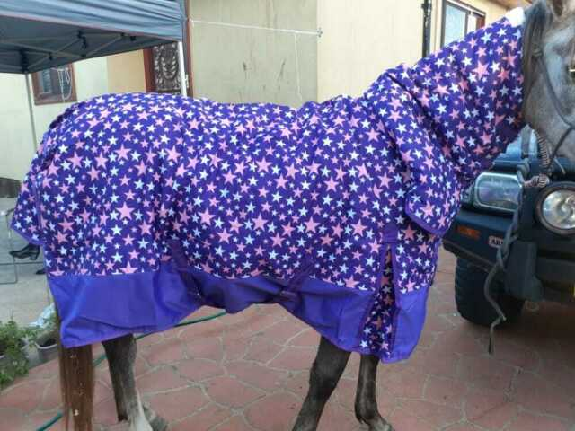Best On Horse Waterproof 600D 250g Fill No Neck Turnout Rugs *SALE*