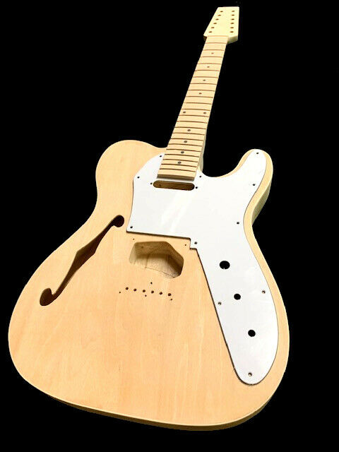 NEW 12 STRING SEMI HOLLOW T STYLE DIY ELECTRIC GUITAR LUTHIER BUILDER KIT