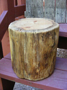Pine-Stump-Stool-Table-Photo-Prop-Plant-Stand-9-034-10-034-diameter