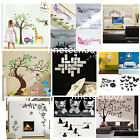 Family DIY Removable Wall Stickers Decal Art Vinyl Mural Home Room Decor Lot FSS