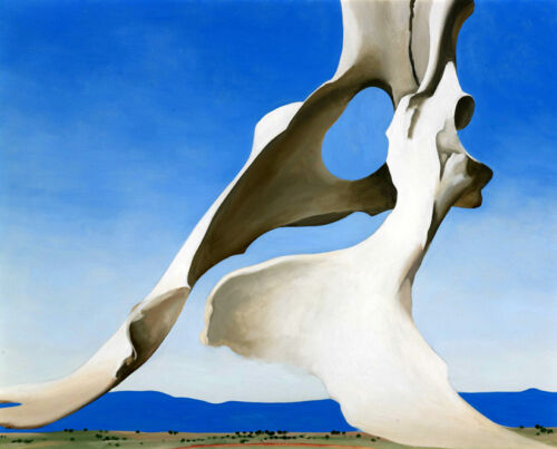 GEORGIA O/'KEEFFE PELVIS WITH THE DISTANCE  GICLEE PRINT FINE CANVAS
