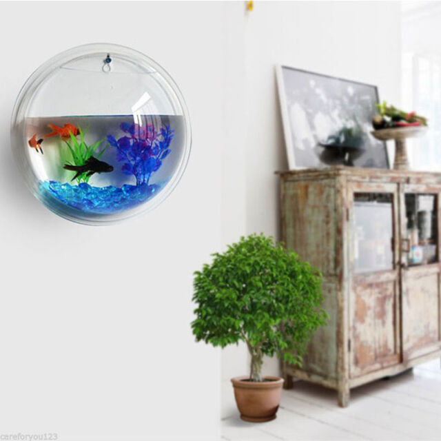 HOT Wall Mount Hanging Fish Bowl Aquarium Tank Beta Hanger Plant Living Room  Dec