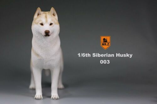 Mr.Z Siberian Husky 003 Figure The Simulation Animal Series 1//6 Model Dog