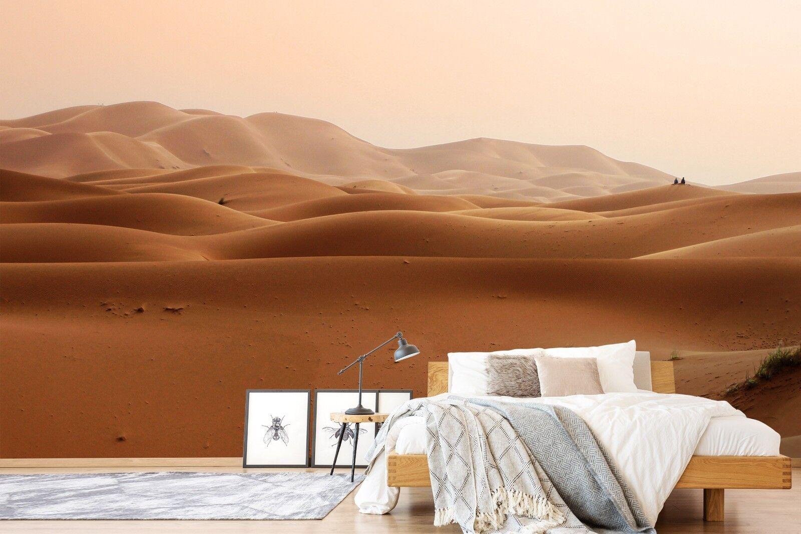3D Desert 7096 Wall Paper Murals Wall Print Wall Wallpaper Mural AU Summer