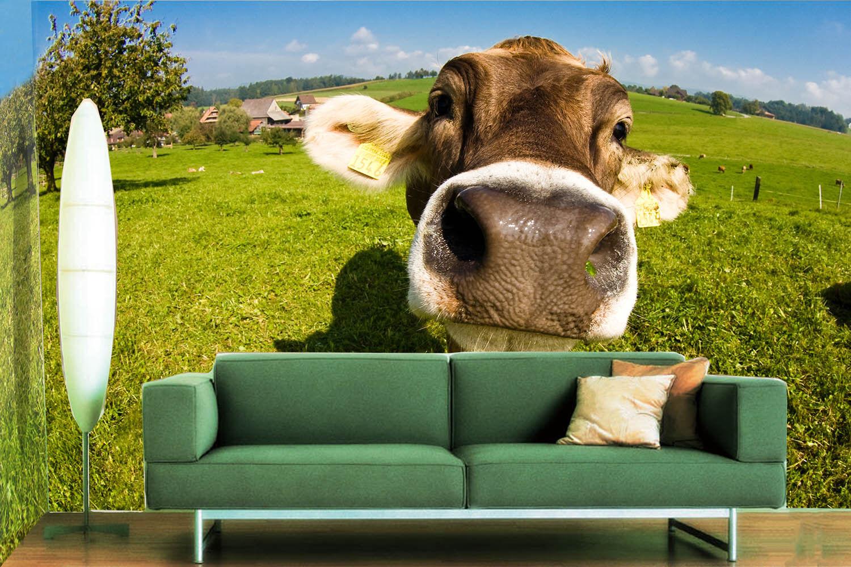 3D Ranch Cute Cow 77 Wall Paper Murals Wall Print Wall Wallpaper Mural AU Kyra