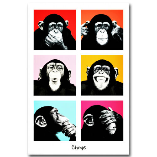 The Chimps Funny Monkey Faces Silk Poster 13x20 24x36 inch
