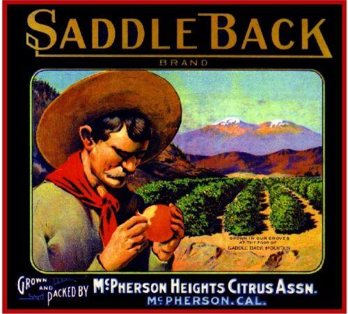 McPherson Orange Saddle Back Mountain Orange Citrus Fruit Crate Label Art Print