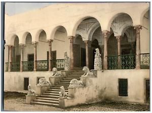 Tunis-Bardo-L-Escalier-des-Lions-PZ-vintage-photochromie-Tunisie-photochr