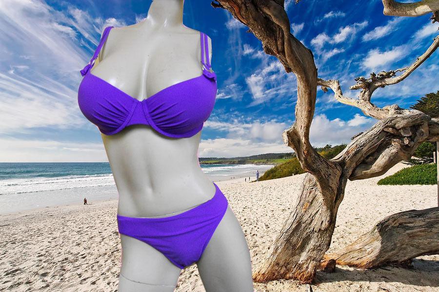 NWT GIDEON OBERSON 2 pc PURPLE bikini bikini bikini BATHING SUIT Swimsuit SET - 32D & 6 70d41d