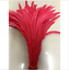 Wholesale-10-2000-Pcs-Beautiful-Rooster-Tail-Feathers-12-14-Inches-30-35cm thumbnail 7