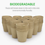 thumbnail 5 - GROWNEER 60 Packs 4 Inch Peat Pots Plant Starters For Seedling With 15 Pcs Plant